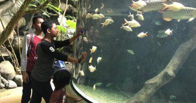 Underwater World Langkawi – Bercuti ke Langkawi 2018 Day 2